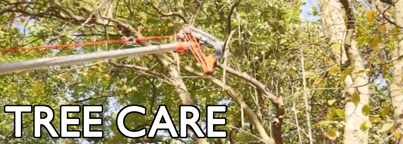 Wolf Garten Multi-change Tools - Tree Care RCVM